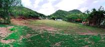 Lots and Land for Sale in Rayo Ward, Sabana Grande, Puerto Rico $0