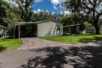 Homes for Sale in Lamplighter On The River, Tampa, Florida $39,000