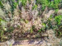 Lots and Land for Sale in Troup, Texas $29,000