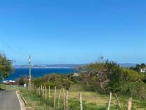 Lots and Land for Sale in Bo. Puntas, Puerto Rico $249,000