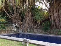 Homes for Rent/Lease in San Rafael, San José $1,800 monthly