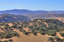 Lots and Land for Sale in Santa Rita, Buellton, California $4,750,000