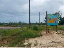 Homes for Sale in Ladyville, Belize $22,500
