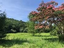 Lots and Land for Sale in Virginia, Fairfield, Virginia $59,500