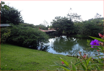 Commercial Real Estate for Sale in Arenal, Guanacaste $340,000