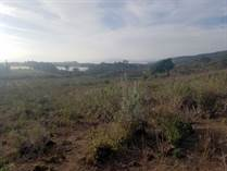 Lots and Land for Sale in Naivasha KES200,000,000