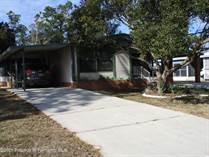 Homes for Sale in Brookridge, Brooksville, Florida $140,000