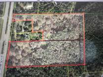 Lots and Land for Sale in Highway 301, Hampton, Florida $249,900