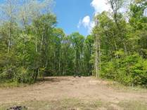 Lots and Land for Sale in Dickson Township, Michigan $27,500