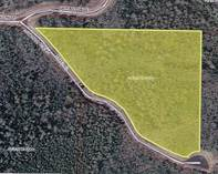 Lots and Land for Sale in Mercer, Wisconsin $34,000