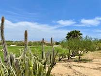 Homes for Sale in Las Colinas, Baja California Sur $600,000