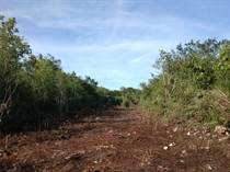 Lots and Land for Sale in Cancun Centro, Cancun, Quintana Roo $14,801,360
