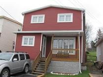 Homes for Sale in Newfoundland, St. John's, Newfoundland and Labrador $272,500