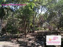 Lots and Land for Sale in Kite Beach, Cabarete, Puerto Plata $39,900