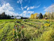 Farms and Acreages for Sale in Valemount, British Columbia $795,000