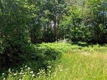 Lots and Land for Sale in Beaverton, Michigan $35,900