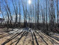 Lots and Land for Sale in Saskatchewan, Delaronde Lake, Saskatchewan $32,000