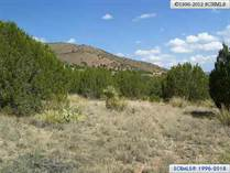 Lots and Land for Sale in New Mexico, Mimbres, New Mexico $27,250