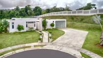 Homes for Sale in Finca Elena, Guaynabo, Puerto Rico $1,500,000