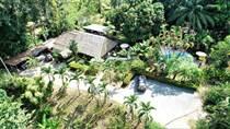 Commercial Real Estate for Sale in Ojochal, Puntarenas $1,425,000
