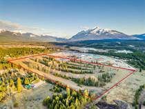Lots and Land for Sale in Valemount, British Columbia $3,500,000