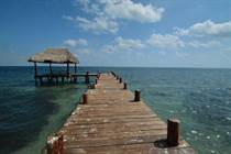 Homes for Sale in Puerto Morelos, Quintana Roo $4,995,000