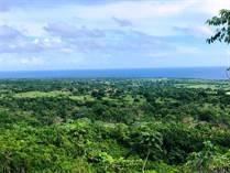 Lots and Land for Sale in Cabrera, Maria Trinidad Sanchez $79,800