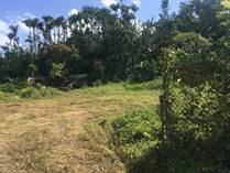 Lots and Land for Sale in Bo. Camarones, Guaynabo, Puerto Rico $290,000