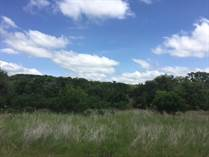 Lots and Land Sold in Vintage Oaks at the Vineyard, New Braunfels, Texas $79,900