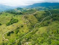 Lots and Land for Sale in Platanillo, Dominical, Puntarenas $239,000
