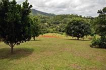 Lots and Land for Sale in Puntarenas, Bijagual, Puntarenas $74,900