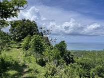 Lots and Land for Sale in Bo. Caguabo, Anasco, Puerto Rico $359,000