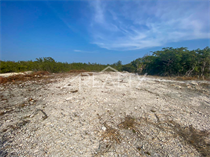 Lots and Land for Sale in Ambergris Caye, Belize $39,000