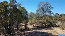Lots and Land for Sale in Silver City, New Mexico $67,100