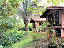 Homes for Sale in Ojochal, Puntarenas $286,000