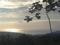 Farms and Acreages for Sale in Platanillo, Puntarenas $199,000