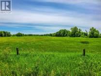 Lots and Land for Sale in Eden Grove, Ontario $149,900