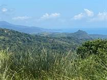 Lots and Land for Sale in Portalon, Puntarenas $160,000