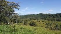 Farms and Acreages for Sale in Marbella, Guanacaste $930,000