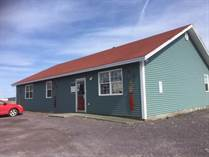 Commercial Real Estate for Sale in Chapel Arm, Newfoundland and Labrador $399,000