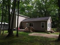 Homes for Sale in Wellston, Norman Township, Michigan $86,000