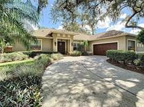 Homes for Sale in Lutz, Florida $499,900