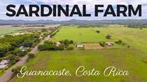 Farms and Acreages for Sale in Sardinal, Guanacaste $399,000