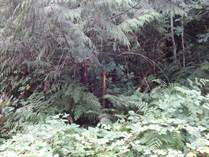 Lots and Land for Sale in Youbou, British Columbia $195,000