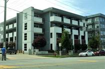 Multifamily Dwellings Sold in Bolivar Heights, Surrey, British Columbia $258,900