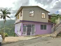 Homes for Sale in Bo. Nuevo Bayamon, Bayamon, Puerto Rico $19,900
