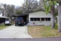 Homes Sold in Tropical Acres Estates, Zephyrhills, Florida $29,500