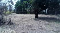Lots and Land for Sale in Rio Segundo , Alajuela, Alajuela $800,000