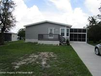 Homes for Sale in Brookridge, Florida $224,000