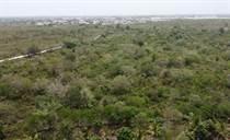 Lots and Land for Sale in El Ejecutivo, Bavaro, La Altagracia $3,914,690